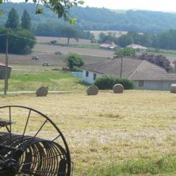 Travaux des champs